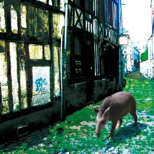 Rouen1_mod